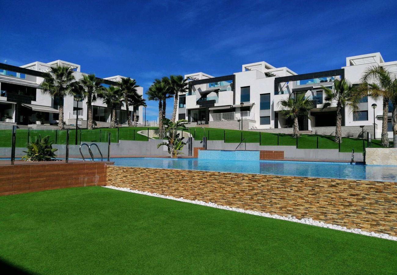 Zapholiday  –  3023  -  appartement Punta Prima, Costa Blanca  –   piscine